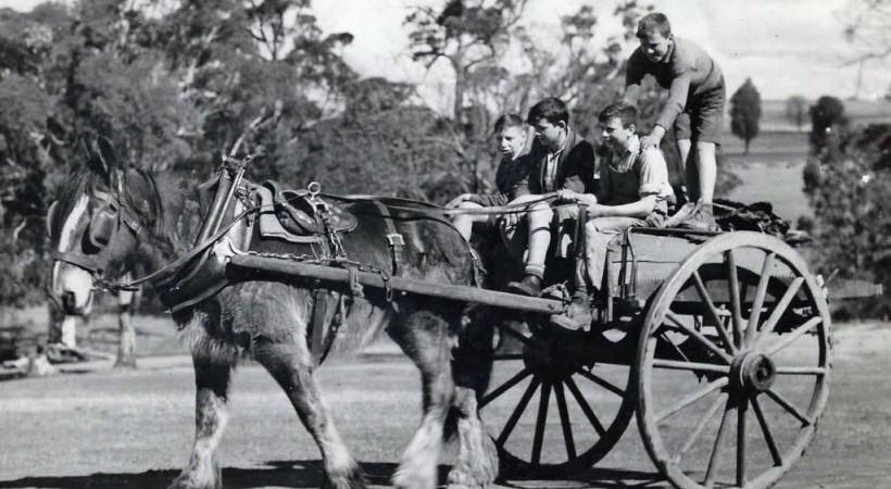 Mowbray Park farm - Barnados