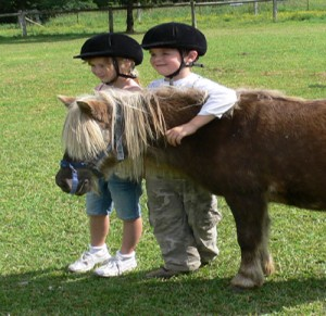 Birthday Parties - pony Rides