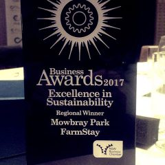 Regional Winner 2017 – Excellence in Sustainability