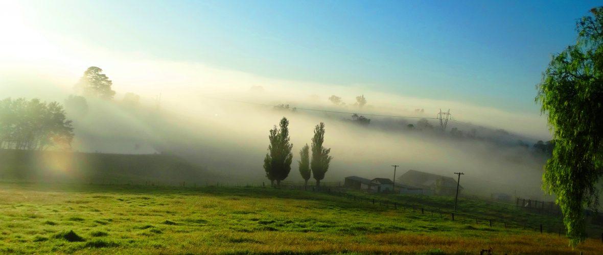 Mowbray Park FarmStay Landscape