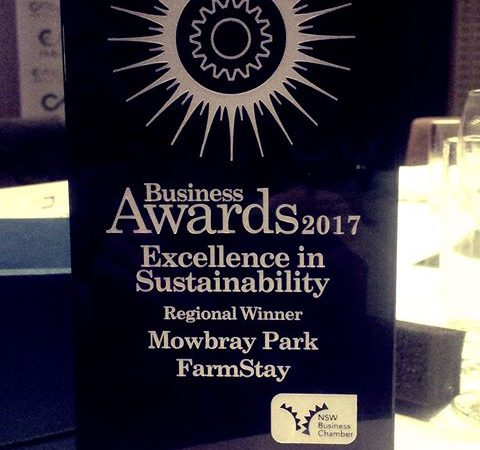 NSW Business Chamber Sustainability award